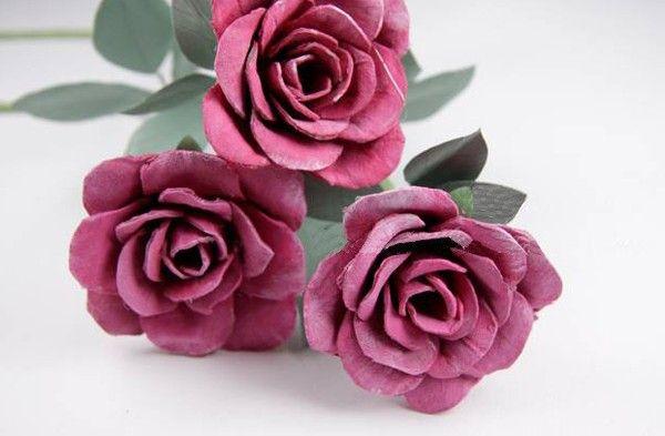 Những cành hoa hồng cực đẹp