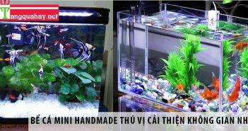 Bể cá mini handmade thú vị cải thiện không gian nhà 1