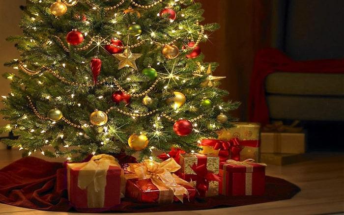 Màu đỏ và xanh lá thường thấy trong mùa Giáng Sinh có ý nghĩa gì 1
