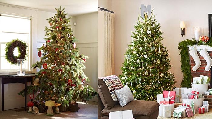 Màu đỏ và xanh lá thường thấy trong mùa Giáng Sinh có ý nghĩa gì 9