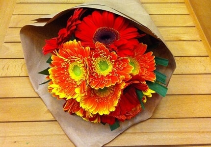 Kết quả hình ảnh cho bó hoa đồng tiền tặng bạn gái