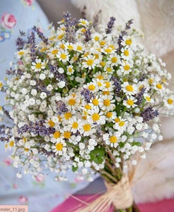 Cách bó hoa oải hương khô đẹp và đơn giản 5