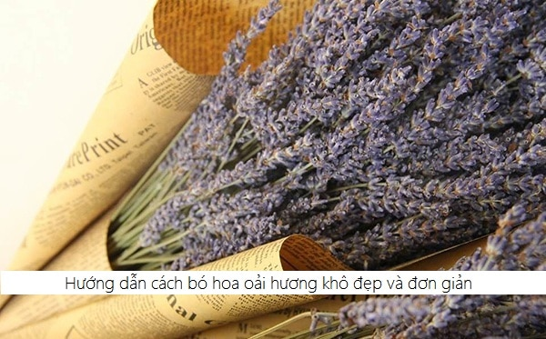Cách bó hoa oải hương khô đẹp và đơn giản 1
