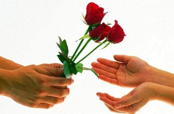 Hoa hồng đỏ được coi là hoa thánh dành riêng cho Thần Vệ nữ