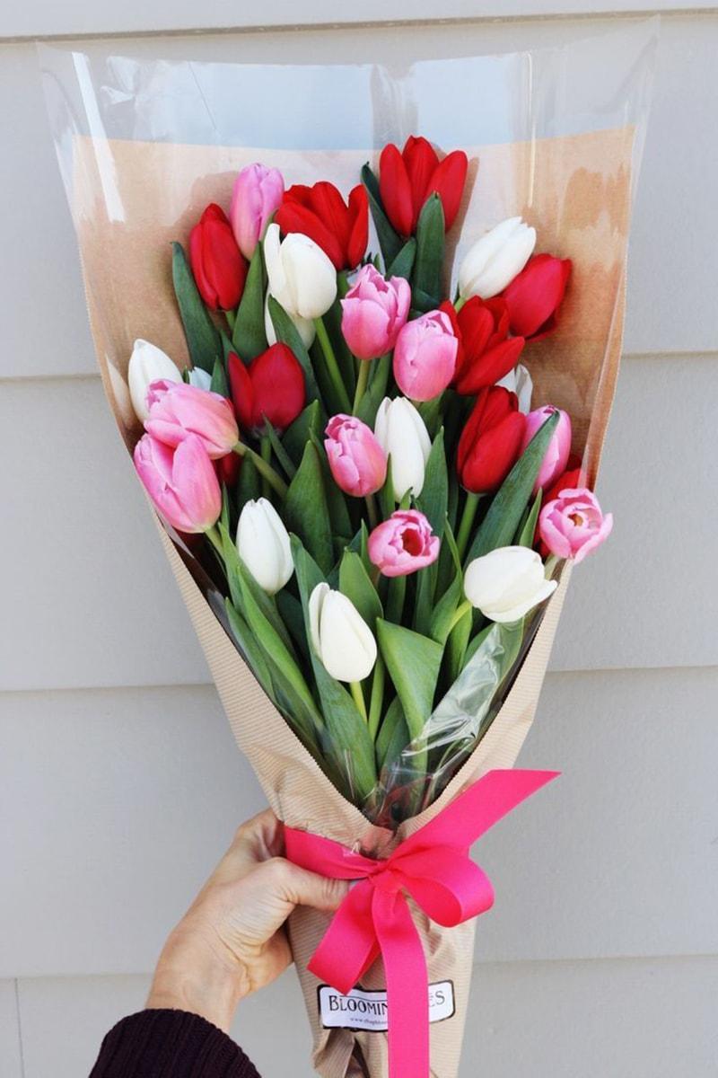 Hoa tulip cũng là một sự lựa chọn thú vị làm quà tặng cho người yêu vào dịp lễ tình nhân